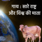 why indian desi cow is called gau mata of india and world