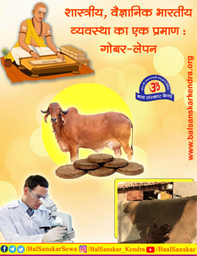 (Gobar) Cow Dung Benefits Proved by Scientists Research