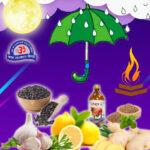 Dakshinayana health tips