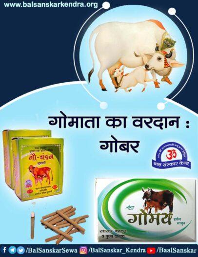 Cow Dung Gobar Benefits