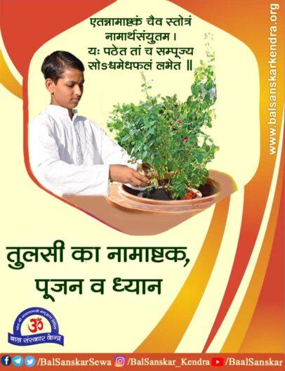 Tulsi Namashtak Stotram Benefits, Stuti, Puja Vidhi in Hindi